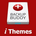 BackupBuddy - WordPress Backup Plugin